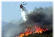 대형산불 화재예방 안전대책을 위한...